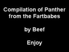 Panther's Fart Compliation Thumb